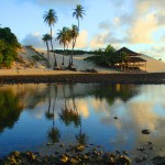 Conheça as belezas da Praia de Genipabu no RN