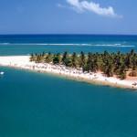 Descubra as Belezas Naturais da Praia do Gunga