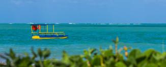 As incríveis belezas naturais de Alagoas. Porto das Pedras